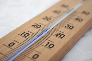 temperature kills termites